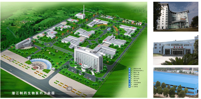 Hubei Qianjiang Pharmaceutical Co. Ltd